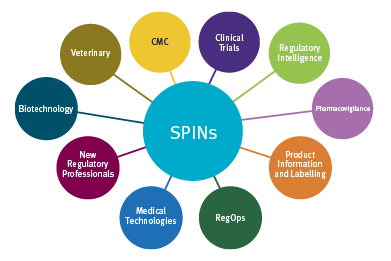 SPIN Networks graphic